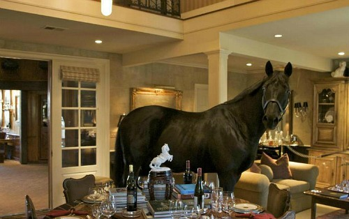 stuffed horse in living room - bad real estate photo